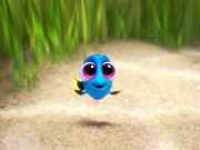 puzzle Finding Dory dzieciństwo